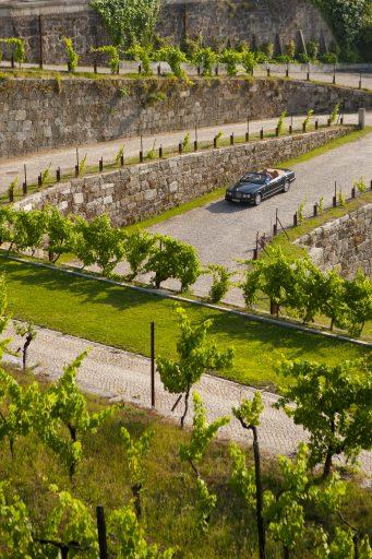 Região do Vinho Verde do Douro